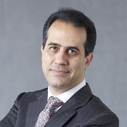 Moustapha Hamdi MD, PhD, Professor